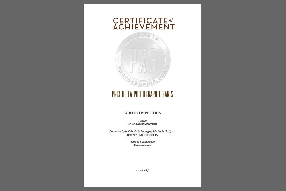 Award in PX3 WHITE: COLOR TRILOGY PHOTOGRAPHY COMPETITION, 2015