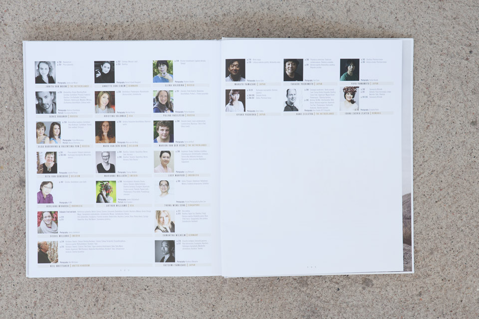 Project published in book 'INTERNATIONAL FLORAL ART 2016/2017'